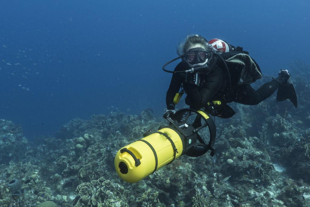 idées d'activités en pleine mer pour vivre des sensations fortes